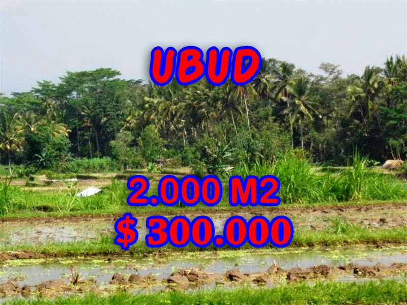 Land in Ubud Bali for sale Exotic view in Ubud Tampak siring – TJUB267