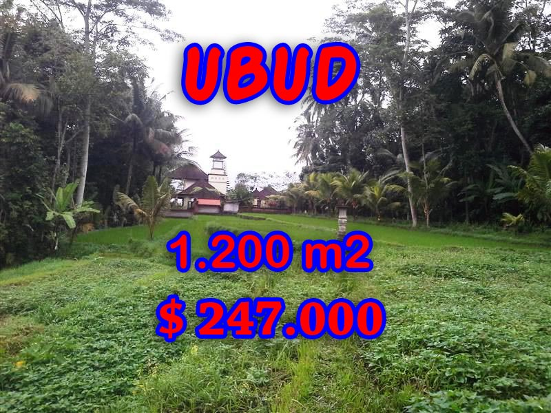 Exotic Property for sale in Bali, land for sale in Ubud Tegalalang – TJUB297