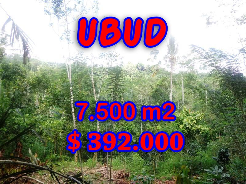 Land for sale in Ubud, Stunning view in Ubud Tegalalang Bali – TJUB290