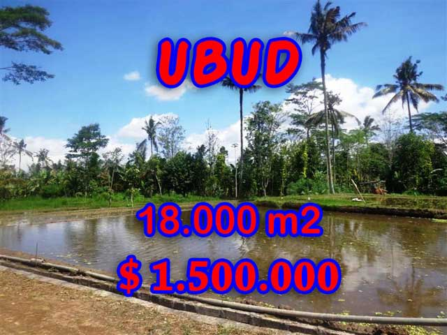 Land for sale in Bali, Unbelievable view in Ubud Bali – 18,000 sqm @ $ 83