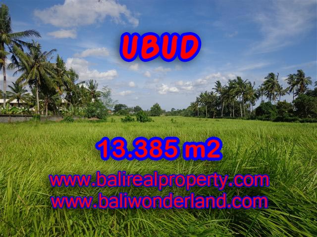Land in Ubud for sale, Outstanding view in Central Ubud Bali – TJUB357