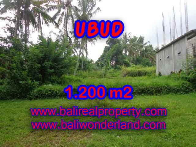 Land for sale in Ubud, Fantastic view in Ubud Center Bali – TJUB399
