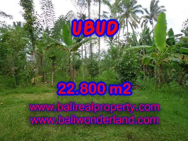 Land for sale in Ubud, Magnificent view in Ubud Tegalalang Bali – TJUB409