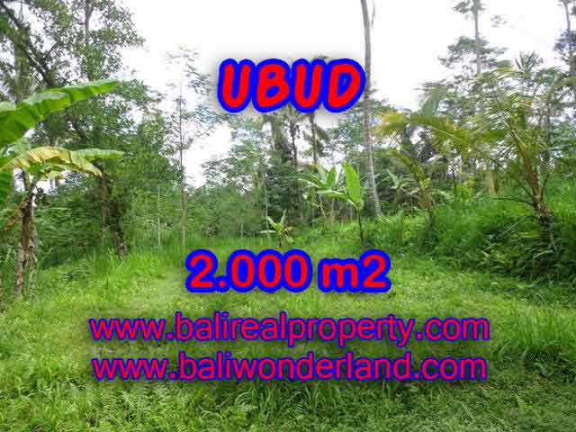 Land in Ubud for sale, Stunning view in Ubud Tegalalang Bali – TJUB406