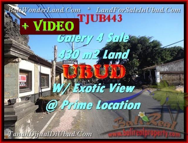 FOR SALE 430 m2 LAND with Galery IN Ubud TJUB443