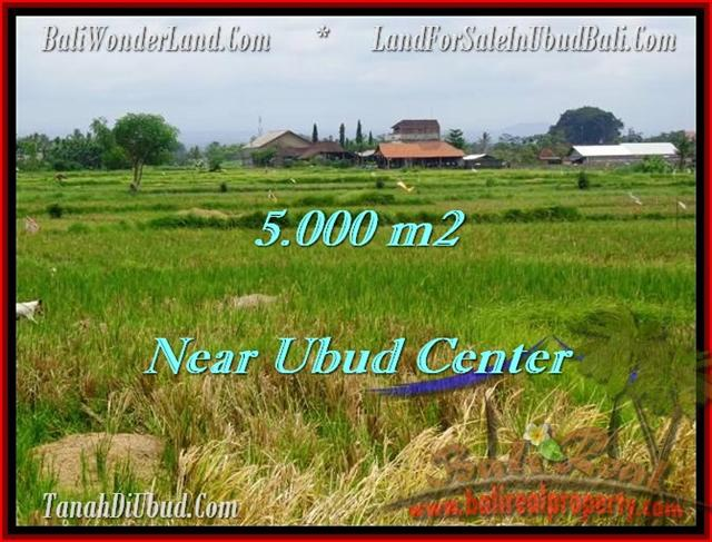 Exotic Ubud Center LAND FOR SALE TJUB474