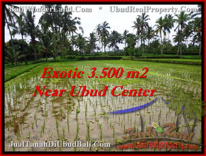 LAND FOR SALE IN Ubud Tegalalang BALI TJUB477