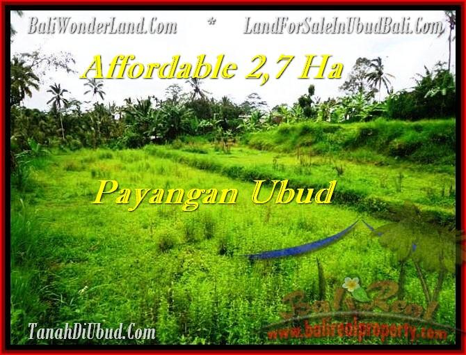 UBUD 27,000 m2 LAND FOR SALE TJUB469