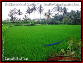 AFFORDABLE LAND FOR SALE IN UBUD