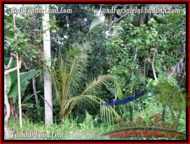 Affordable 3,200 m2 LAND FOR SALE IN UBUD BALI TJUB484