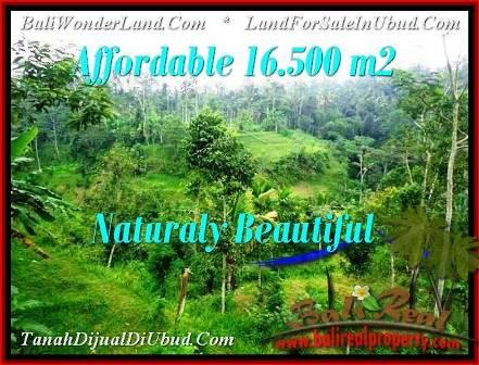 FOR SALE Beautiful PROPERTY 600 m2 LAND IN UBUD BALI TJUB493