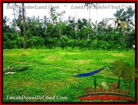 FOR SALE Exotic PROPERTY 600 m2 LAND IN UBUD TJUB493