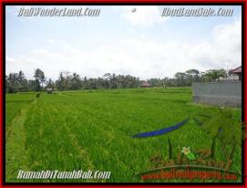 FOR SALE Magnificent 1.000 m2 LAND IN UBUD TJUB445
