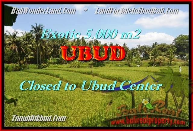 Magnificent LAND FOR SALE IN Sentral Ubud BALI TJUB449