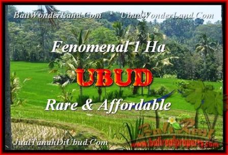 10.000 m2 LAND SALE IN Ubud Pejeng BALI TJUB456
