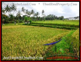 FOR SALE Affordable PROPERTY 1,600 m2 LAND IN UBUD BALI TJUB487