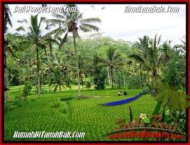 Beautiful PROPERTY Ubud Tegalalang 2,000 m2 LAND FOR SALE TJUB490