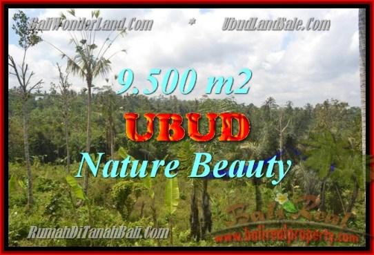 Exotic Ubud Payangan BALI LAND FOR SALE TJUB430