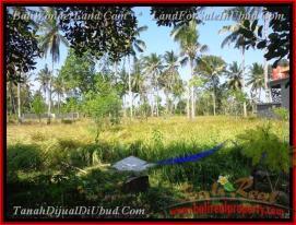 Beautiful PROPERTY 500 m2 LAND FOR SALE IN Sentral Ubud TJUB433