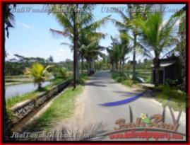 FOR SALE Beautiful PROPERTY 8.000 m2 LAND IN UBUD BALI TJUB441