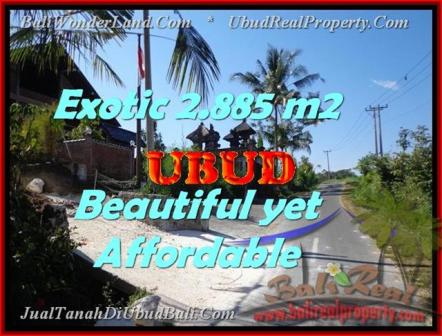 Exotic PROPERTY UBUD BALI 2.885 m2 LAND FOR SALE TJUB442