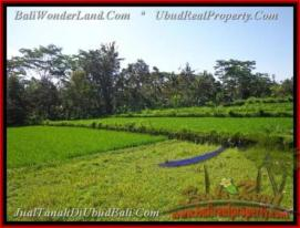 Affordable LAND FOR SALE IN Ubud Pejeng BALI TJUB442