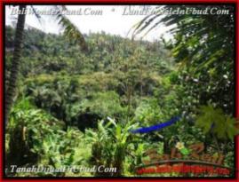 Exotic LAND IN UBUD BALI FOR SALE TJUB503