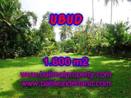 Exotic 1,600 m2 LAND IN UBUD BALI FOR SALE TJUB416
