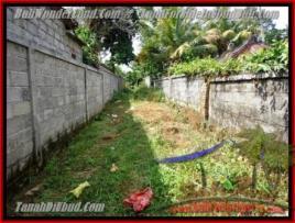 FOR SALE Magnificent LAND IN Sentral Ubud BALI TJUB417
