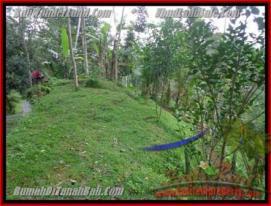 Affordable PROPERTY LAND FOR SALE IN UBUD TJUB422