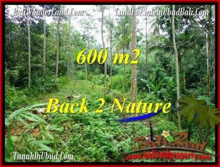 FOR SALE Affordable PROPERTY 600 m2 LAND IN UBUD BALI TJUB493