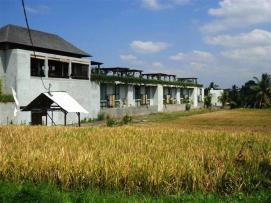 FOR SALE Beautiful 1,500 m2 LAND IN UBUD BALI TJUB508