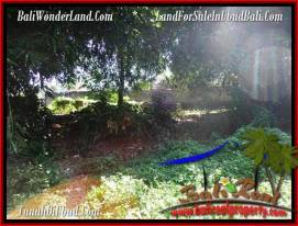 Magnificent PROPERTY LAND SALE IN UBUD TJUB499