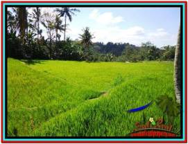 Affordable PROPERTY 600 m2 LAND FOR SALE IN Ubud Tampak Siring TJUB513