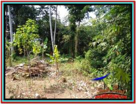 600 m2 LAND IN UBUD BALI FOR SALE TJUB523