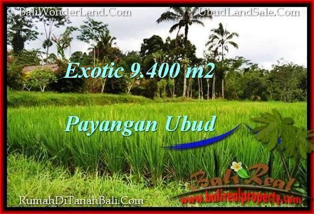 9,400 m2 LAND IN UBUD BALI FOR SALE TJUB526
