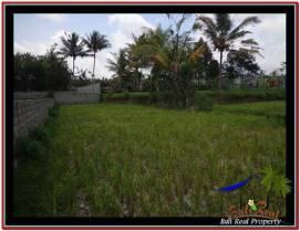 FOR SALE Beautiful PROPERTY 900 m2 LAND IN Ubud Tampak Siring TJUB532