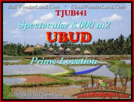 FOR SALE Magnificent PROPERTY 8.000 m2 LAND IN UBUD BALI TJUB441