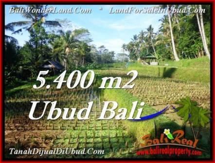 Beautiful 5,400 m2 LAND SALE IN UBUD BALI TJUB554