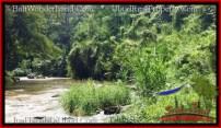 Affordable PROPERTY Sentral Ubud 21,800 m2 LAND FOR SALE TJUB546