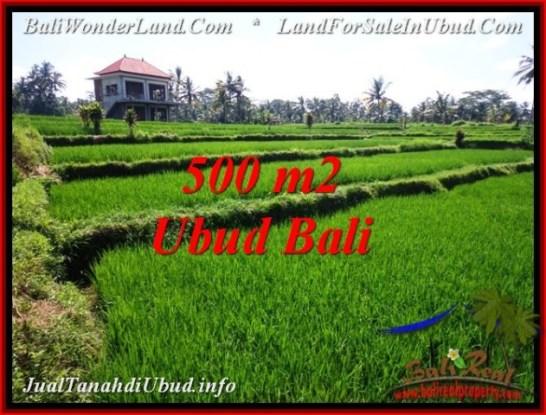 UBUD BALI 500 m2 LAND FOR SALE TJUB543