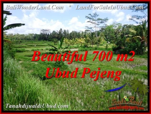 Beautiful LAND IN UBUD FOR SALE TJUB534