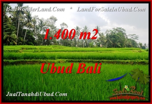 Exotic 1,400 m2 LAND SALE IN UBUD BALI TJUB539