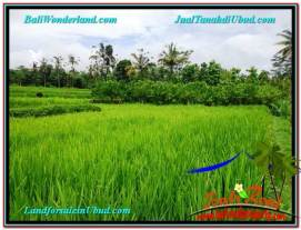 Exotic 1,200 m2 LAND SALE IN UBUD BALI TJUB559