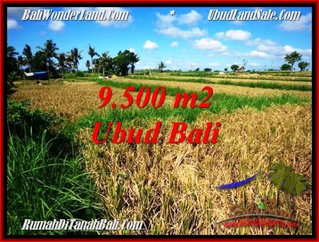 Exotic 9,500 m2 LAND SALE IN Sentral Ubud TJUB548