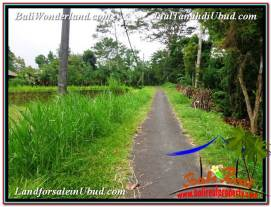 Magnificent 3,300 m2 LAND IN UBUD BALI FOR SALE TJUB562