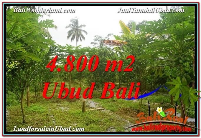 Affordable 4,800 m2 LAND SALE IN UBUD BALI TJUB571
