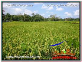 FOR SALE Exotic 2,700 m2 LAND IN UBUD BALI TJUB595
