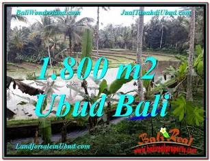 FOR SALE 1,800 m2 LAND IN UBUD TJUB616
