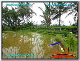 Magnificent PROPERTY 1,822 m2 LAND FOR SALE IN Ubud Payangan TJUB574